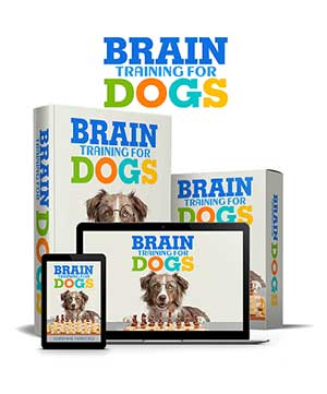 Brain Training For Dogs Review is how to get a puppy to stop biting